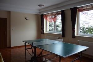 DSC_0309_rekreacja_ping_pong